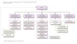 schemat organizacji